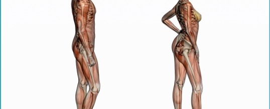 What To Do When Back Pain Strikes